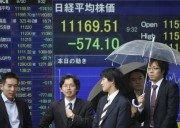Bursa asiatica - bursa japoneza